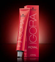 Краска для волос Schwarzkopf Professional IGORA ROYAL Cendre, оттенки Сандре, 60 ml