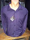 Рубашка мужска Recobar в клетку