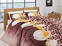 Комплект постельного белья First Choice Ranforce полуторный Lily