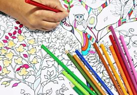 Раскраски, аппликации и книги с наклейки