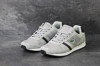 Мужские кроссовки Lacoste серые 3846