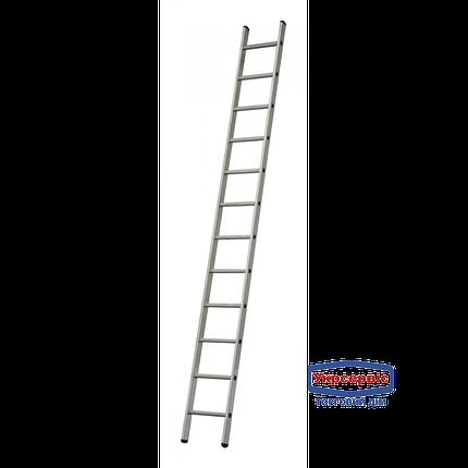 Лестница приставная ELKOP VHR 1*9 (Бесплатная доставка!) , фото 2