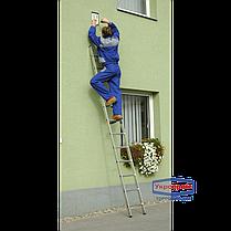Лестница приставная ELKOP VHR 1*9 (Бесплатная доставка!) , фото 3