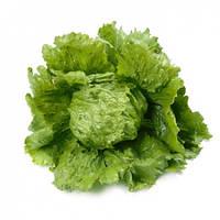 Салат кочанный тип Айсберг Диамантинас (Diamantinas RZ) 1000 семян