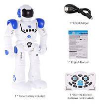 Интерактивный робот Hongtuo