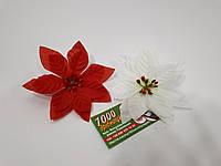Рождественник (Пуансетия) 75161