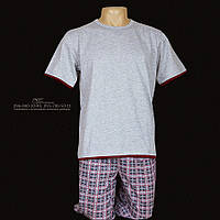Мужская пижама 648-1 футболка + бриджи, 100% коттон. Размер L