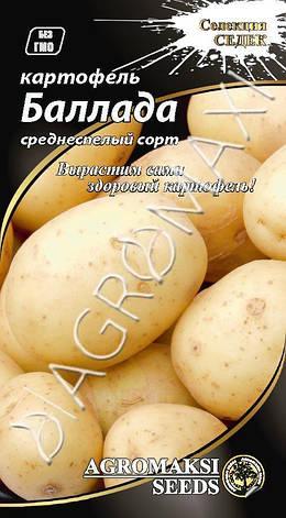 "Картофель ""Баллада"" 0,01г ТМ Агромакси, фото 2"