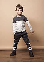 Брюки с начесом для мальчика Звезда Овен 17Ш-269-2 104