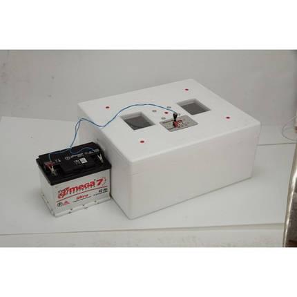 Автоматический инкубатор Несушка М (76 яиц., 12В, экспортный образец, вентилятор, гигрометр), фото 2