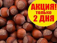 Орех фундук неочищенный в скорлупе урожай 2017