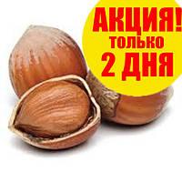 Орех фундук неочищенный в скорлупе урожай 2017 5кг