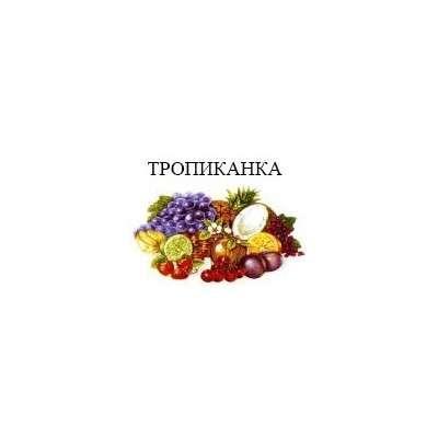 Чайник эмалированный (1 л) Epos Тропиканка, арт. 2707/2Ч
