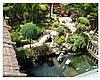 Стилі кам'янистих садів та їх створення.