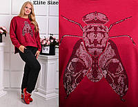 Женский стильный костюм спорт Муха:кофта и штаны (5 цветов)