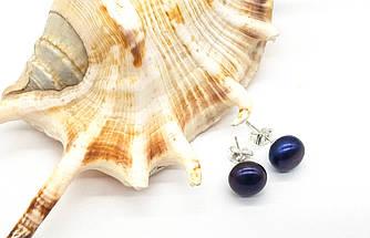 Серьги гвоздики, натуральный Жемчуг с фиолетовым отливом, родий