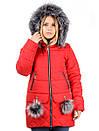 Женская зимняя куртка N15172, фото 2