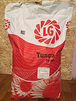 Подсолнечник Limagrain LG Тунка Среднеспелый 2016 г.
