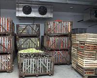 Вентиляция помещений хранения фруктов. Киев