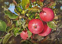 «Красные яблочки» картина маслом
