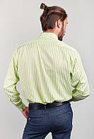 Светлая классическая мужская рубашка в полоску (Светло-оливковый) АРТ-869-15.5