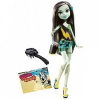 Monster High Монстер Хай Френки Штейн Мрачный пляж Оригинал!!! Mattel - США. T7988