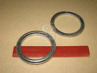 Кольцо глушителя (пр-во Россия) 863420
