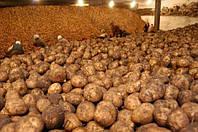 Монтаж систем вентиляции картофелехранилища. Киевская область