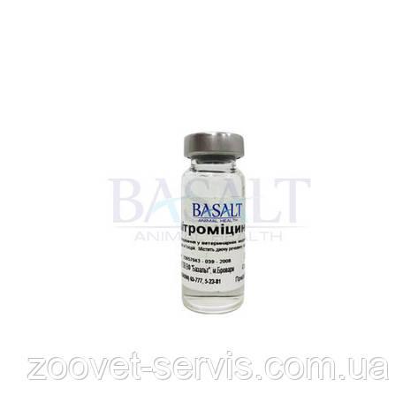 Азитромицин 10% флакон 10 мл, фото 2