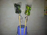 Конфета на палочке зеленая СОБАКА маленькая 6,5 см, на подарок в год собаки
