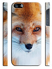 Чехол для iPhone 5/5s Лисица