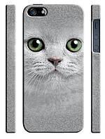 Чехол для iPhone 5/5s Кошка белая