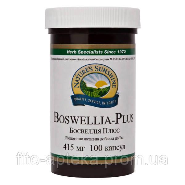 Boswellia Plus Босвелия Плюс