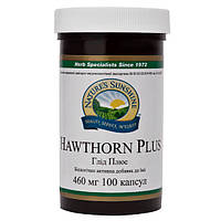 Hawthorn Plus Боярышник Плюс