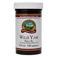 Wild Yam Дикий Ямс