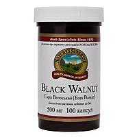 Black walnut Блэк Волнат (Черный орех)