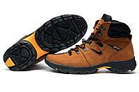 Мужские Ecco Biom зимние кроссовки, на меху, натуральная кожа рыжие, р. 40 41 42 43 44 45
