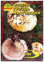Мицелий гриба Груздь Настоящий, 10 г