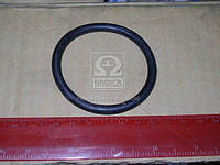 Кольцо уплотнительного фланца (пр-во БРТ) 740.1303018
