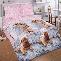 Подростковое двуспальное постельное белье Верный друг, поплин 100%хлопок