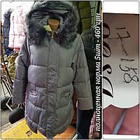 Куртка женская 17-158 (норма , 5 ед) зима