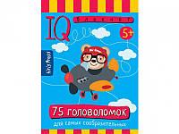 IQ блокнот. 75 головоломок для самых сообразительных