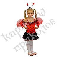 Маскарадный костюм Божья коровка (размер 4-6 лет), фото 1