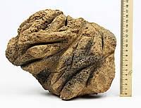 Камень Самурай 16