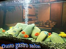 Дифузор з підсвічуванням для аерації води в акваріумі, водоймі