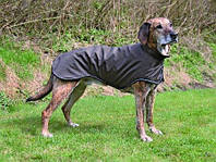 Куртка Trixie Avallon, 50 см, фото 1