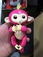Ручная обезьянка Finger lings Finger Monkey MXuhy, фото 5