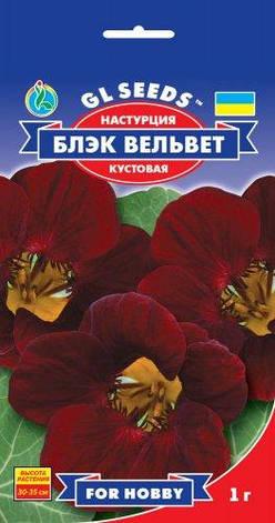 Настурция Блэк Вельвет, фото 2