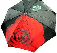 34521 Роза