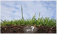 Кислотность почвы: как с этим бороться?